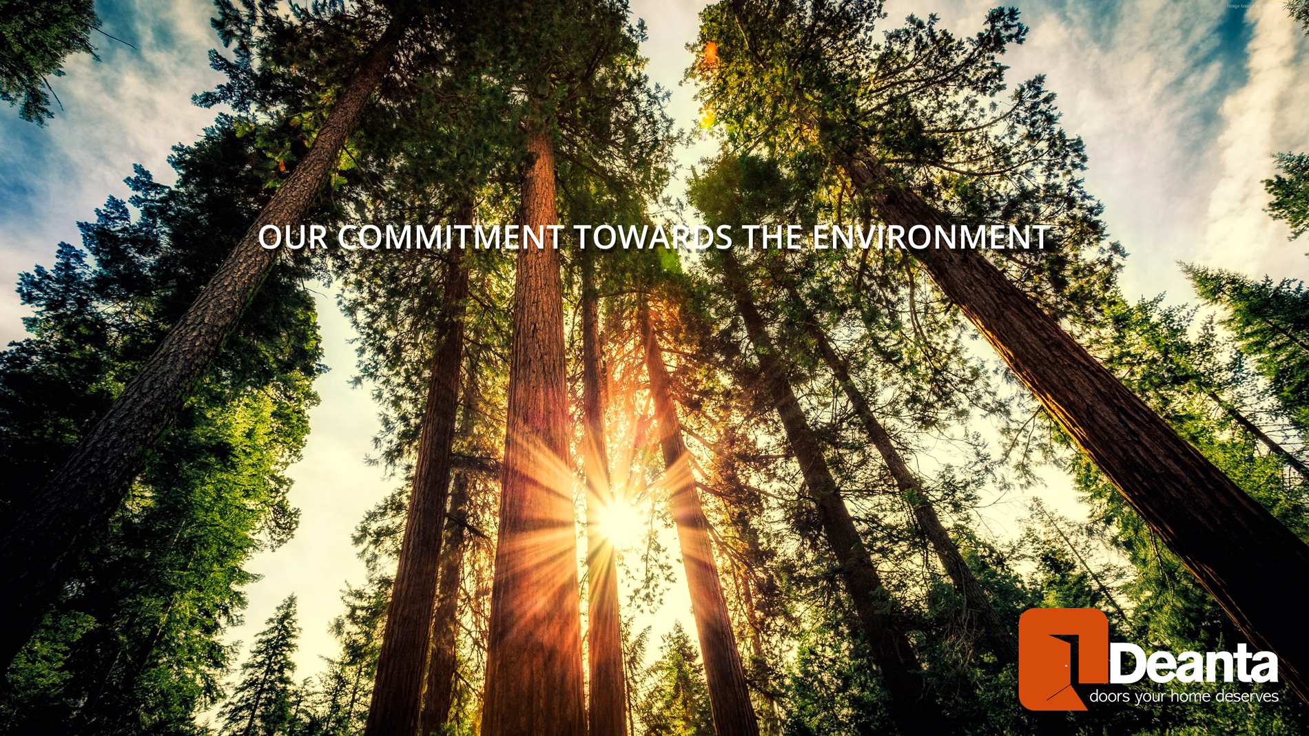 OUR COMMITMENT TOWARDS THE ENVIRONMENT