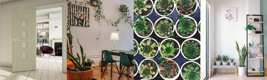4 images showing use of plants with interior design and use of doors to improve light